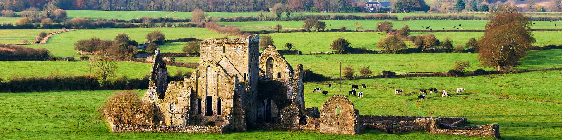 ruines van Hore Abdij bij Cashel Ierland